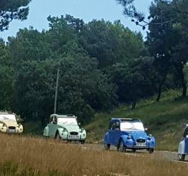 Team building 2cv en Provence
